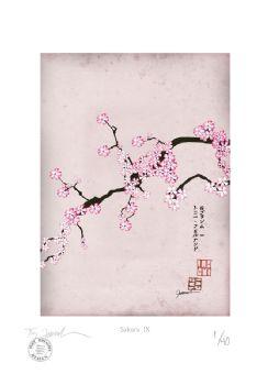 Cherry Blossom Print - Sakura 9